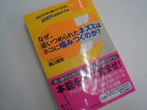 DSC02714.JPG